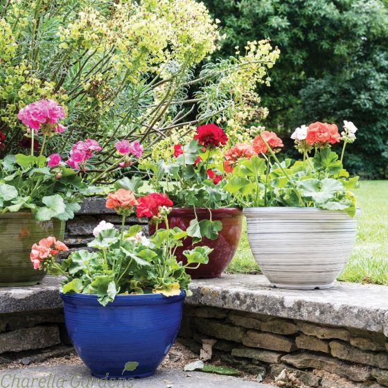 Feather Lightweight Planter Collection in 4 Colours