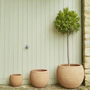 Etch Terracotta Bowl Pots Available in Upto 3 Sizes