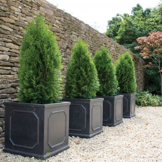Chelsea Terrace Lead Effect Planters Upto 5 Size Options