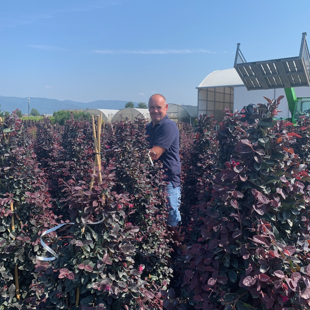 Jason out in the field picking the best!